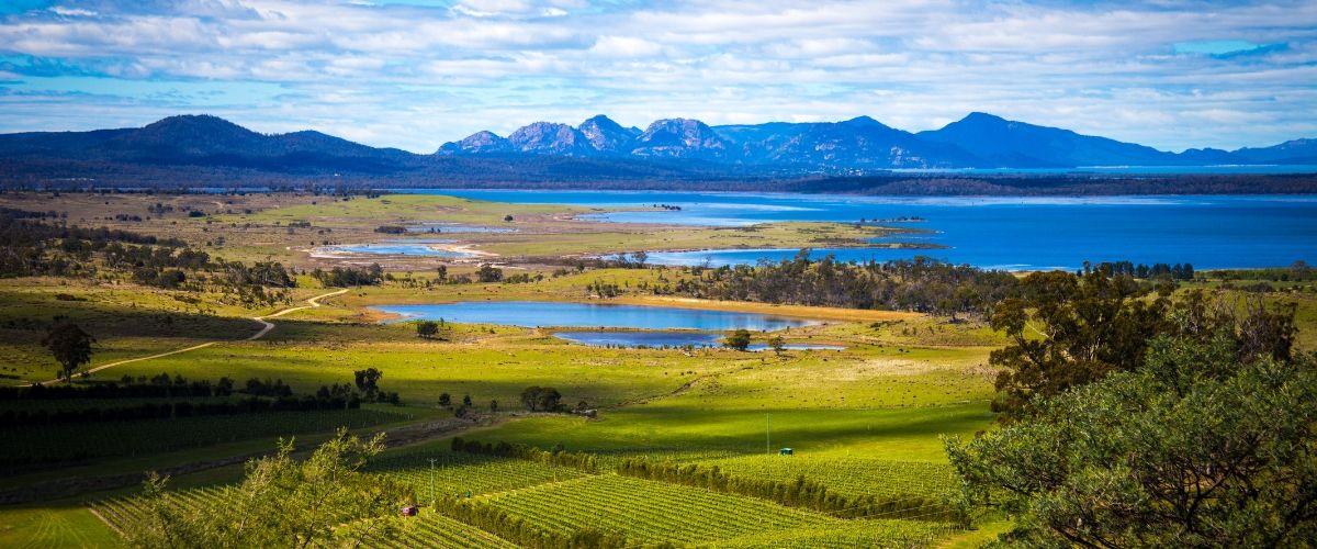 East Coast Wine Trail